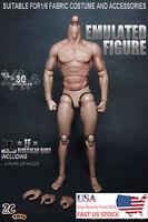 "ZC Toys 1/6th Muscular Body Fit 12"" Hot Toys Male Head Sculpt U.S.A. in stock"