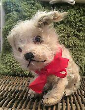 Steiff Molly - Rare 1920's Antique Old Mohair Dog - original + BUTTON Teddy Bear