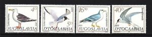 Yugoslavia 1687-90 MNH 1984 Various Birds Complete Set Very Fine