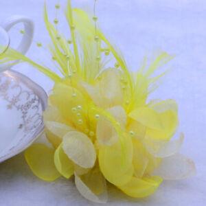 5-10PCS Feather cosmos silk corsage hairpin wedding headdress woman hat ornament