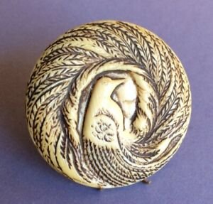 One Piece Celluloid Peacock Button, Cream Brown, Large