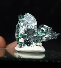 Gemmy Green Brochantite crystals.  Milpillas Mexico