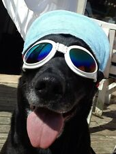 Dog sunglasses goggles eyewear dog accessories dog health