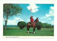 ROYAL CANADIAN MOUNTED POLICE, RCMP, HORSE, CANADA CHROME POSTCARD