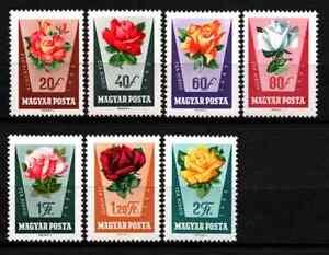 HUNGARY 1962 - SET FLOWERS / ROSES MNH