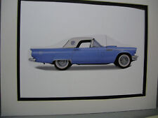 1957 Ford Thunderbird  artist Auto Museum Full color Illustrated not photo