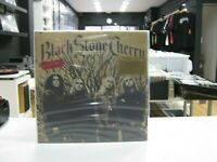 Black Stone Cherry LP Europa 2019 Klappcover 180GR. Vinyl Limitierte Gold Vinyl