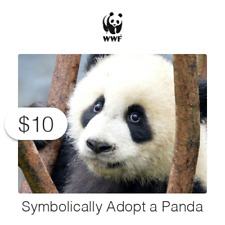 $10 Charitable Donation For: Symbolically Adopt a Panda