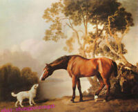 ZOPT678 strong animal horse&dog in lake side wall art OIL PAINTING on CANVAS