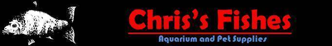 Chris s Fishes and Snails