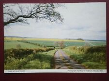 POSTCARD NORTHAMPTONSHIRE GLAPHORN - RAPE FIELDS