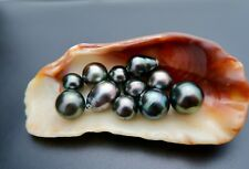 11 RARE AA+ TAHITIAN BLACK & COLORFUL PEACOCK CULTURED UNDRILLED PEARLS LOT