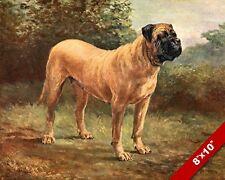The Proud & Gentle Mastiff Dog Portrait Art Painting Print On Real Canvas