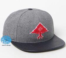 New LRG Big Trees Snapback Mens Cap Hat