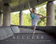 Ballet Dance Motivational Poster Art Print Shoes Flats Tutu Leotard Skirt MVP507