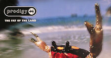 Prodigy 1997 Fat Of The Land U.S. Original Promo Poster