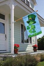Toland Shamrock Showe St Patrick's Day Hat Clover Ladybug House Home Garden Flag