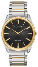 Citizen Eco-Drive Men's AR3074-54E Stiletto Black Dial Two-Tone 38mm Watch