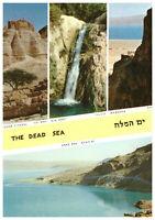 The Dead Sea: Citadel, Ein Gedi, Massada, Israel, Palestine Rare Postcard