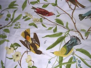 013O Pottery Barn SPRING SPARROW Full/Queen DUVET COVER Button Closure EUC