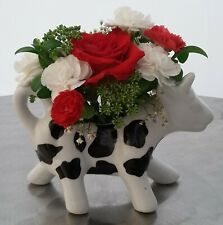 Cow Creamer Black and white cow jug, china