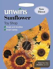 Unwins Pictural Paquet - Fleur - Tournesol Jouet Magasin - 30 Graines