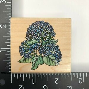 Rubber Stampede Small Hydrangea Wood Mounted Rubber Stamp A2171E Flower Plant