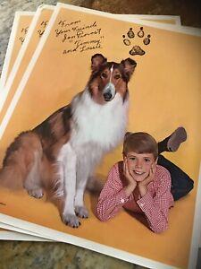 Rare Vintage Lassie and Timmy RARE Color 8.5x11 Promo
