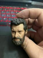 1//6 Elderly Wolverine Head Sculpt Carved Fit 12inch Male Action Figure Toys Doll