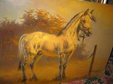 ARENDT Fred, *1928  Wundervolles Pferdebild  1974