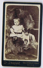 CDV Young Child with Pet Jack Russell Dog Carte de Visite by Whitfield of Bootle