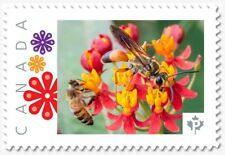 uq. TWO BEES = HONEYBEE =Insects= Picture Postage MNH-VF Canada 2019 [p19-01s20]