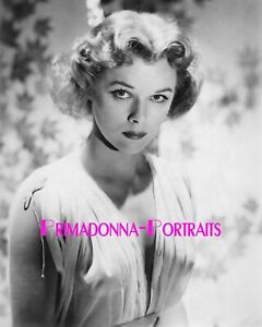 SALLY FORREST 8X10 Lab Photo Sexy Youthful Mysterious Eyes Actress Portrait