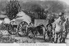 Serbian Cannons taken by Austria Hungary Troops 1915 8x10 World War I WW1 Photo