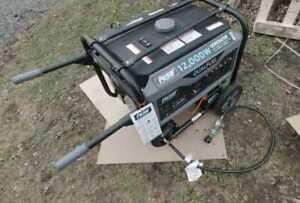 Pulsar 12000 Watt Portable Dual Fuel Propane/Gas Generator Electric Start G12KBN