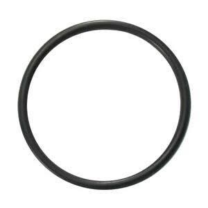 Astral Pool O Ring 50mm Suits CTX TX FX CX VX ZX Viron Union GENUINE