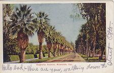 Magnolia Avenue, Riverside, CA, Pre-Linen Postcard