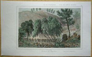1848 print NAPOLEON'S GRAVE, SAINT HELENA, ATLANTIC OCEAN (#20)