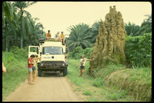 629035 Termite Mound Zaire A4 Photo Print