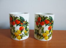 Portmeirion Oranges & Lemons Spice Jar x 2 Susan Williams Ellis No Lids England