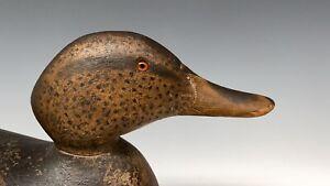 Mason Premier Mallard Hen Decoy Vintage Duck Hunting Decoys Old Excellent Early