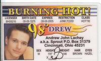 Drew Lachey of Boy Band 98 Degrees novelty collectors id card Drivers License