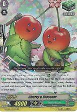 CARDFIGHT VANGUARD CARD: CHERRY & BLOSSOM - G-FC04/072EN RR