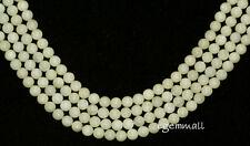 "15.5"" Natural White Moonstone Round Beads 6mm #74059"