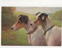 Dogs Vintage Art Postcard 140b