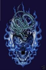 2005 ODM DRAGON AND SKULL ART PRINT POSTER NEW 22x34 FREE SHIPPING