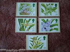 Set di SCHEDE PHQ TIMBRO N. 151 Orchidee, 1993. 5 Scheda Set. ottime condizioni