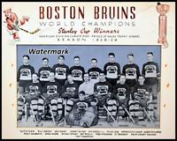 NHL 1928 - 29 Stanley Cup Champion Boston Bruins Team Pic 8 X 10 Photo Free Ship