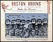 NHL 1928 - 29 Stanley Cup Champion Boston Bruins Team Pic 8 X 10 Photo Free Ship