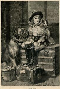 MASTIFF OLD ENGLISH TOY SPANIEL KING CHARLES ANTIQUE DOG ART ENGRAVING PRINT